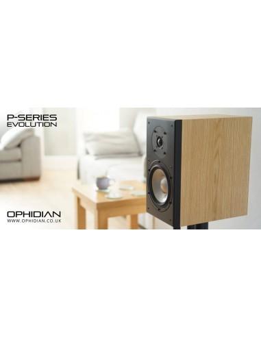 Ophidian Audio Prophet P1 Evolution...